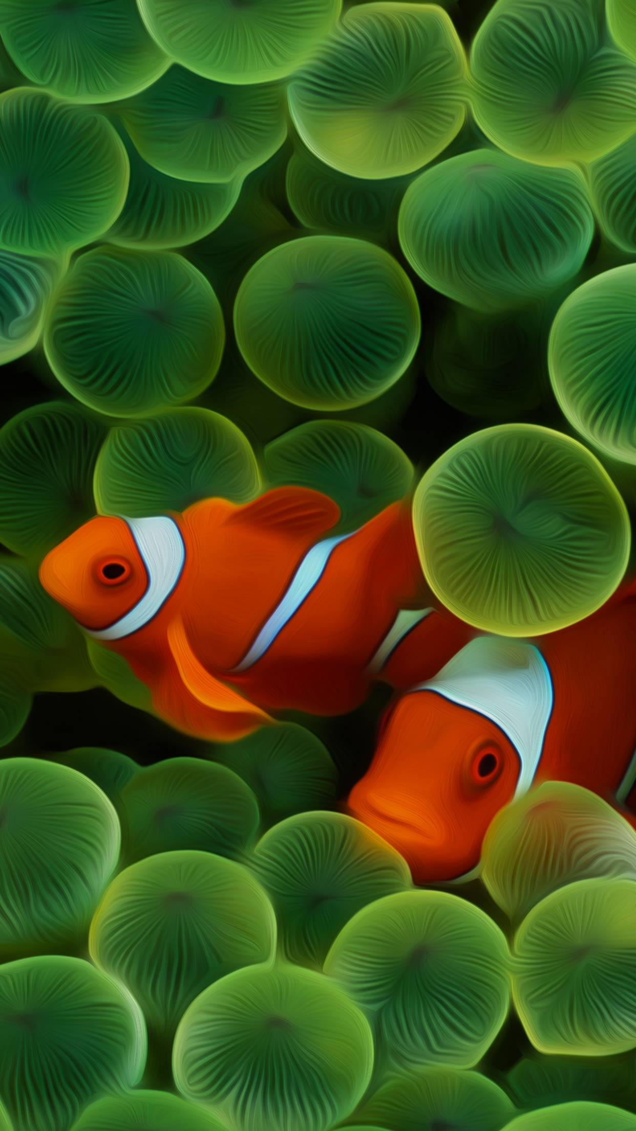 Pesce Pagliaccio Iphone 2g Clown Fish Wallpapers Central
