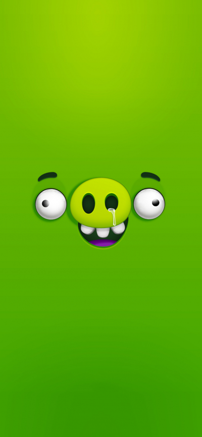Bad Piggies Angry Birds Bigtoons Wallpapers Central