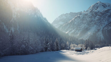 Photo of Winter Wallpapers